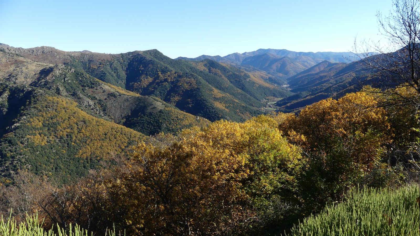 Vallée Borgne en Cévennes