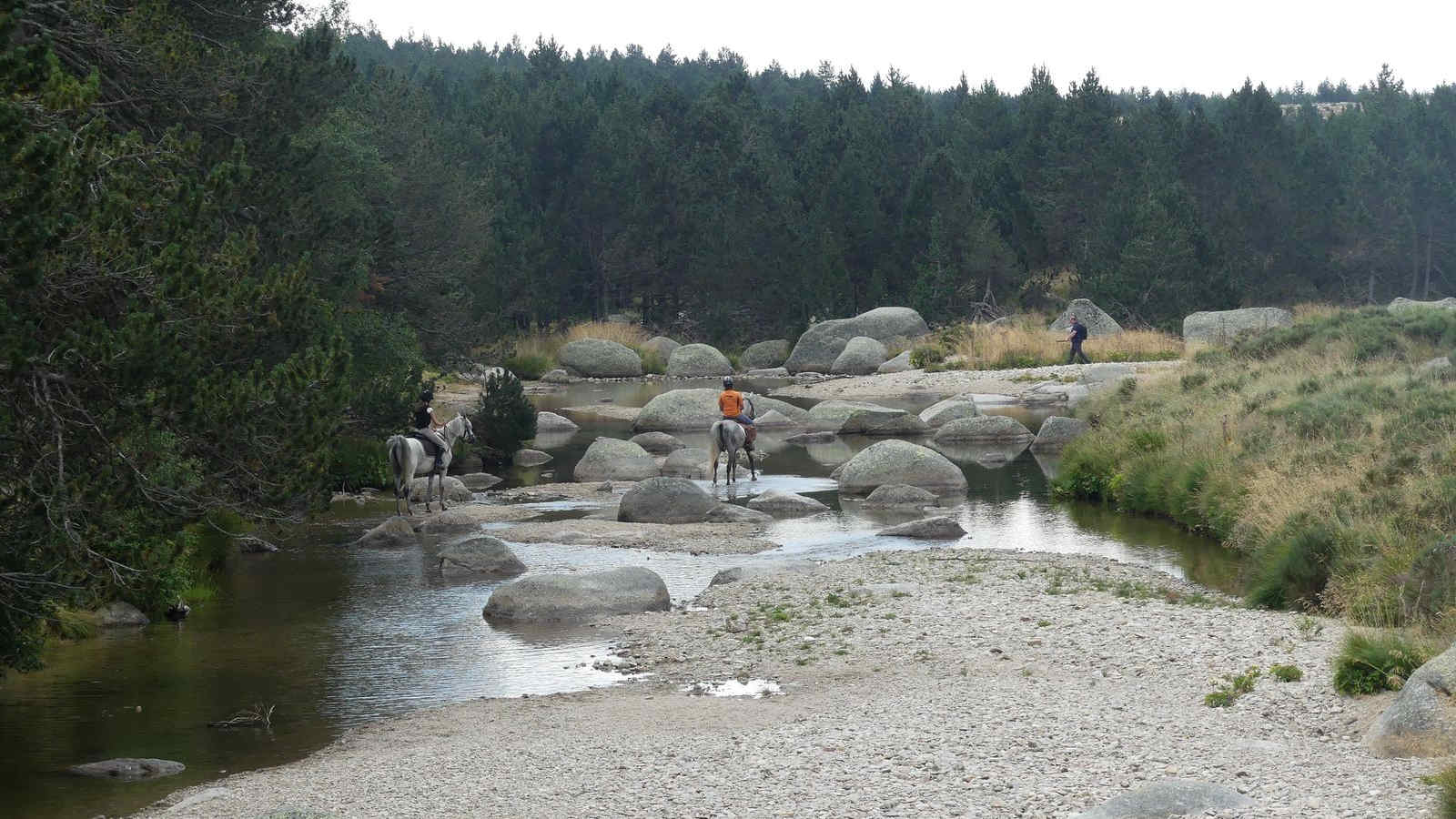 Baignade dans la source du Tarn su Le Mont Lozère